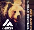 Francesco Sambero – The Bear Theme